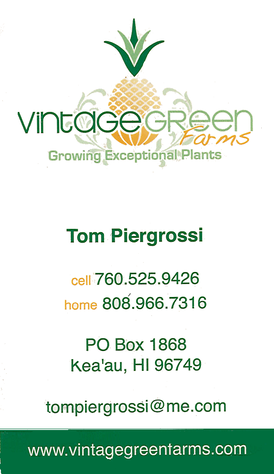 Business card for Tom Piergrossi, of Vintage Green Farms of Keaau, Hawaii